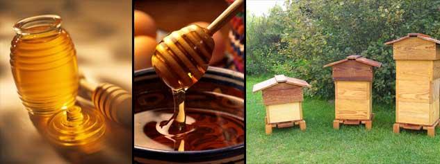 les vertus du miel et ses bienfaits sant bio diab te. Black Bedroom Furniture Sets. Home Design Ideas