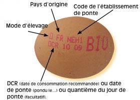 code oeuf