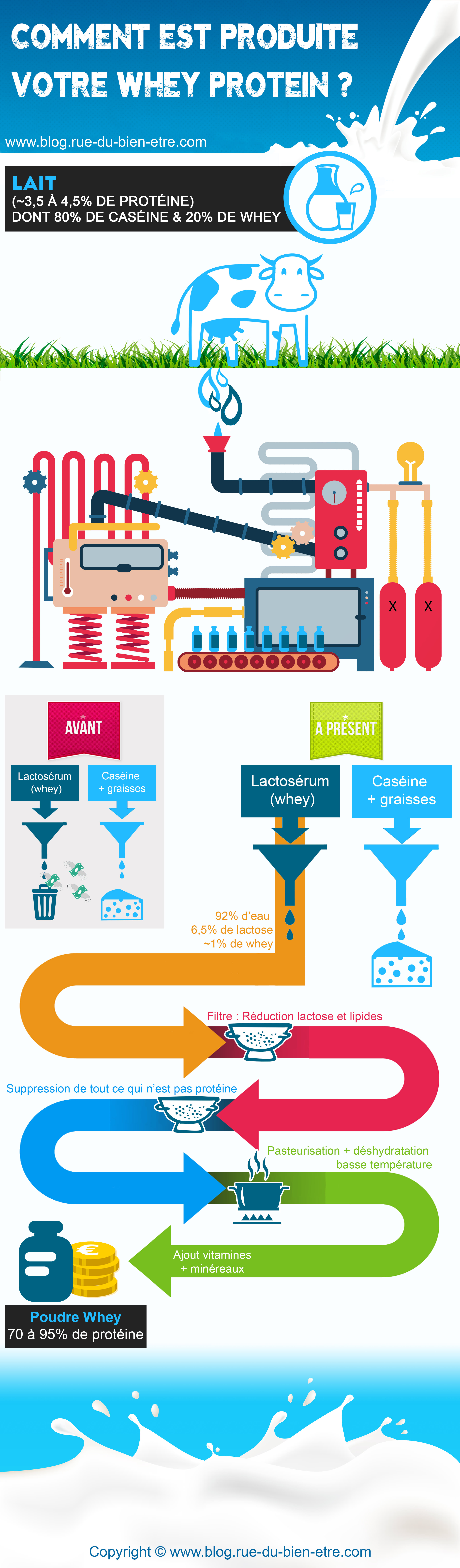 infographie whey protein