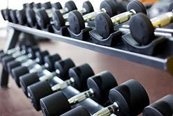 rack altères salle de sport